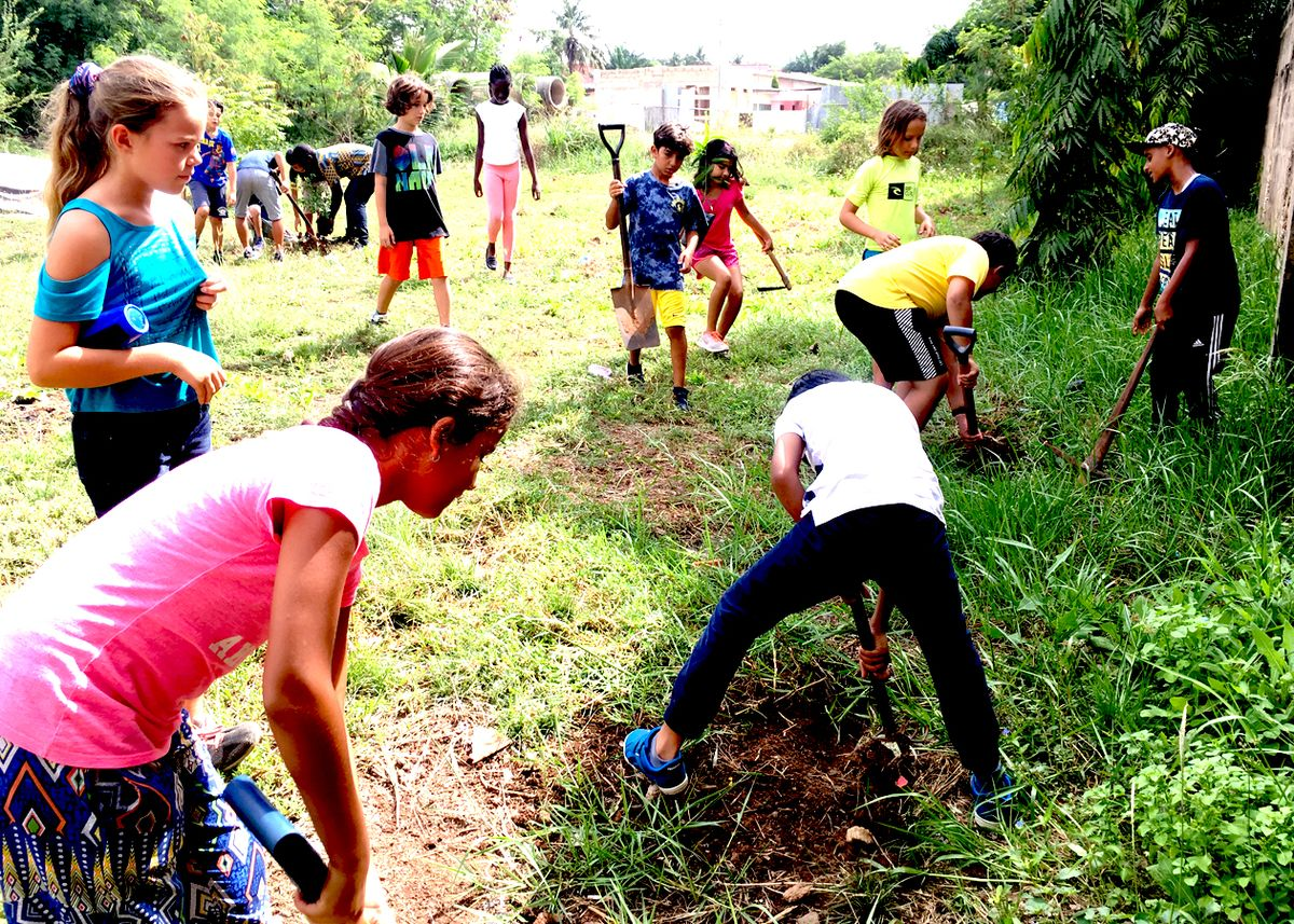 4th Graders Plant Trees for the Future