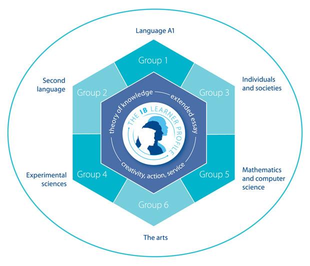 lincoln community school ib diploma programme ib diploma programme